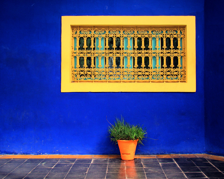 Marrakech_Majorelle_Garden_2011