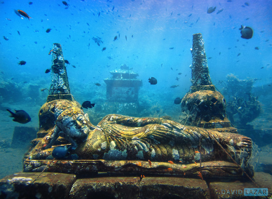 6-David-Lazar-Bali-Diving-1__880