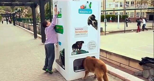 Automat koji hrani napuštene pse
