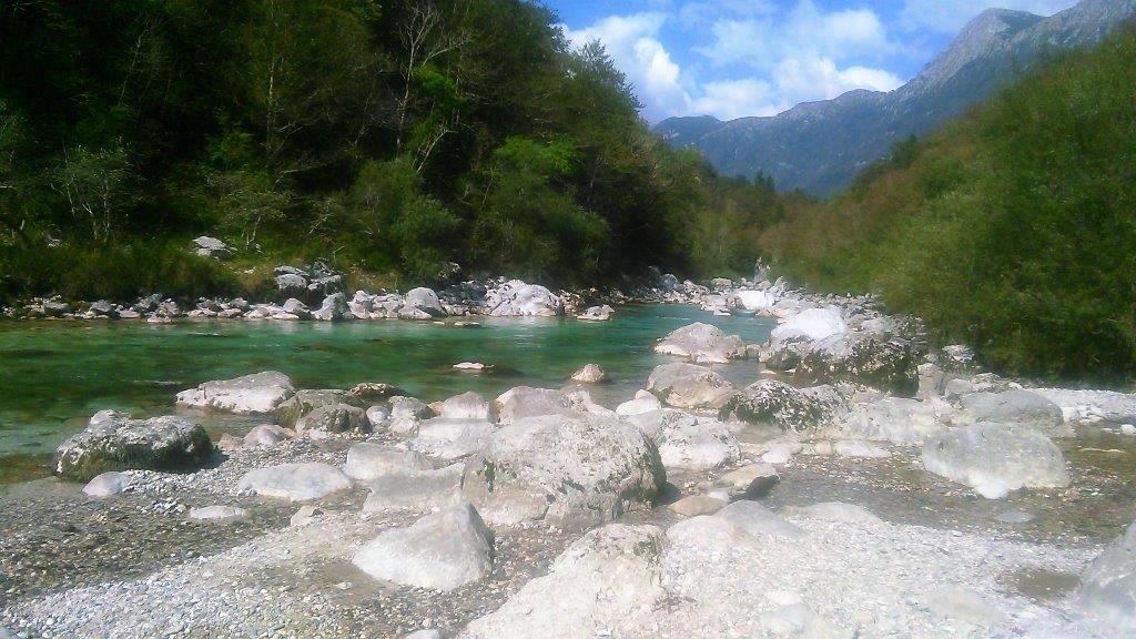 Zelena Slovenija
