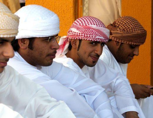 vlada ujedinjenih arapskih emirata