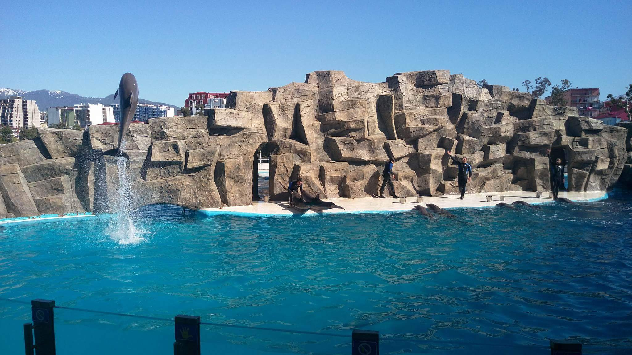 Delfinarijum u Batumiju
