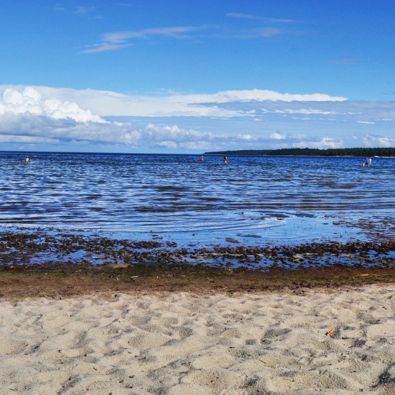 Botnjisko more