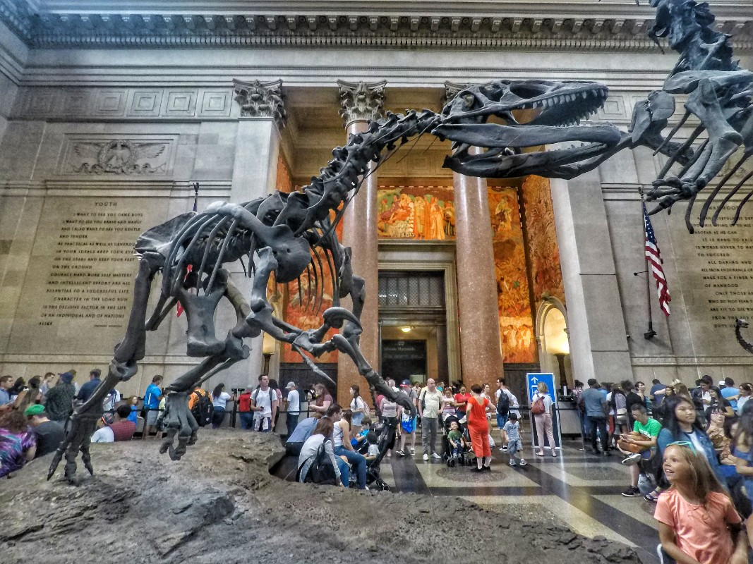 Muzej u Njujorku