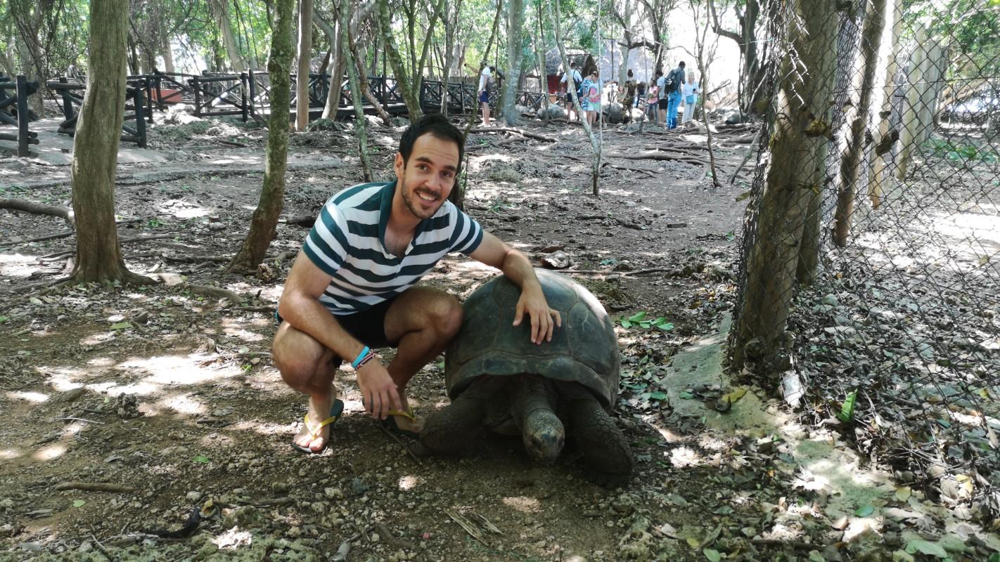 džinovske kornjače Prison island
