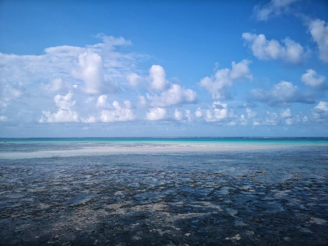 more Zamzibar