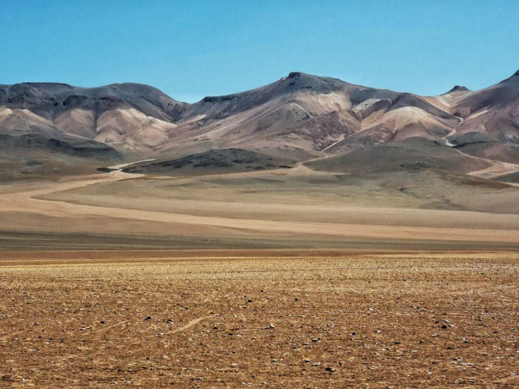 Salvador Dali Desierto