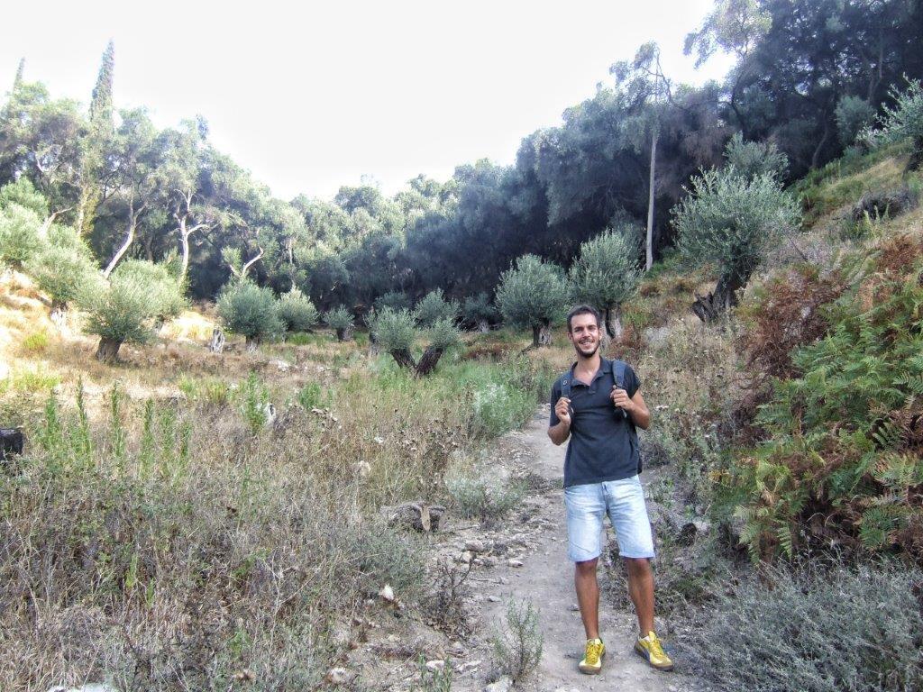 maslinjaci u Grčkoj
