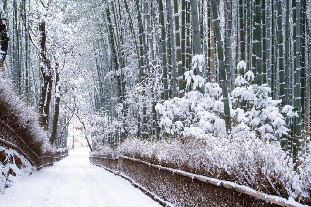 zima u Japanu