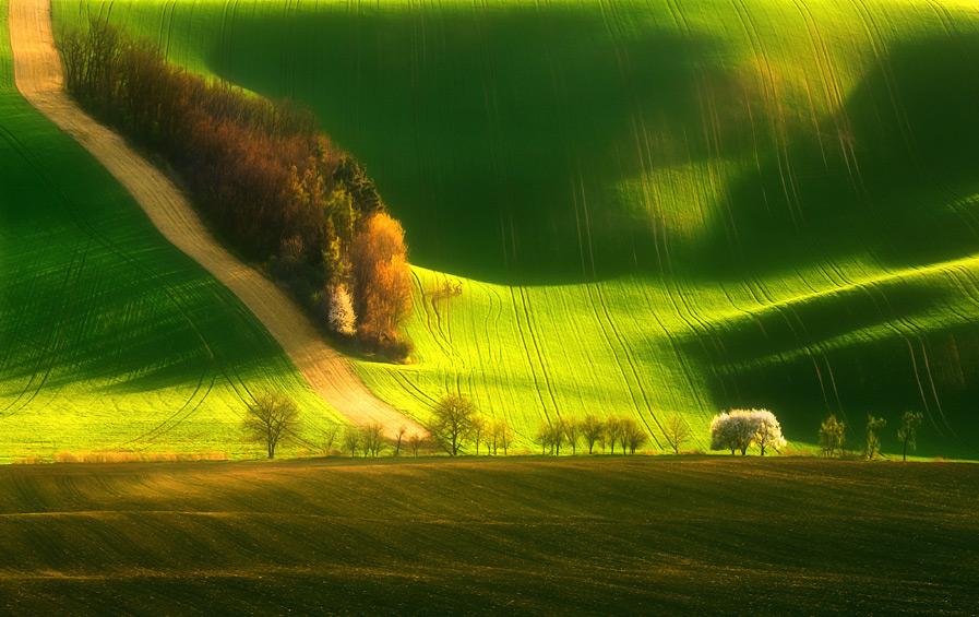 beautiful-moravia-krzysztof-browko6