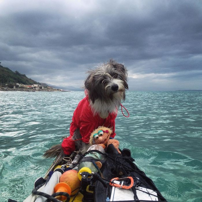 Im-kayaking-along-the-Mediterranean-Sea-since-three-years-and-Im-taking-my-found-dog-with-me-5742ce17519f5__700 - Copy