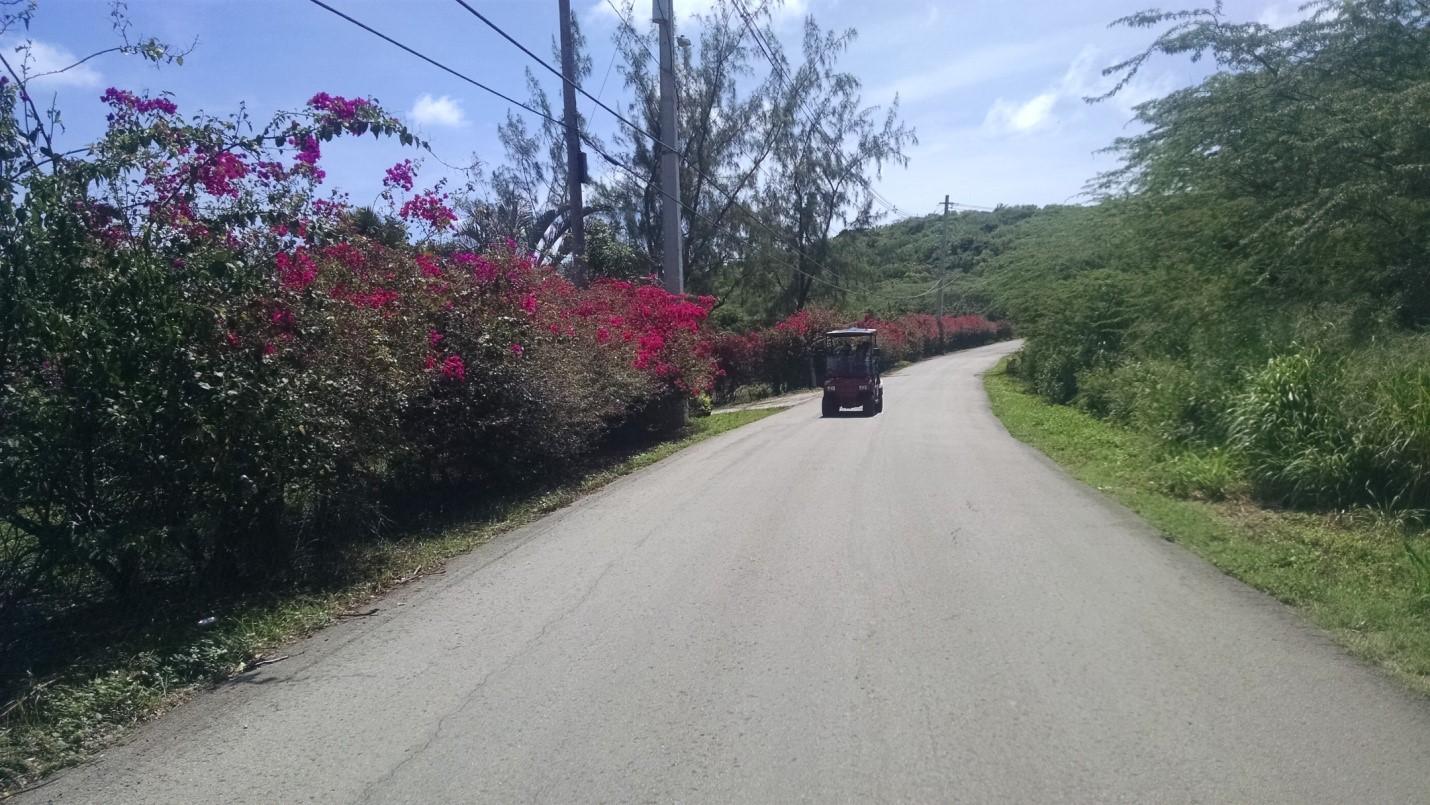 ulice portorika