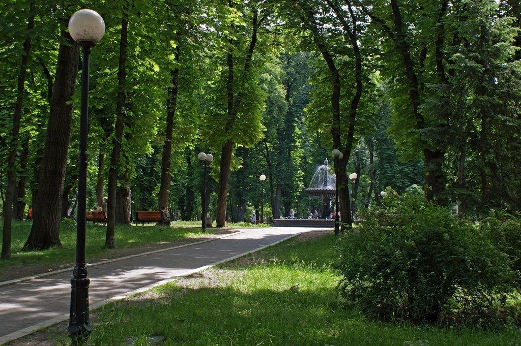 Zelelnilo i parkovi