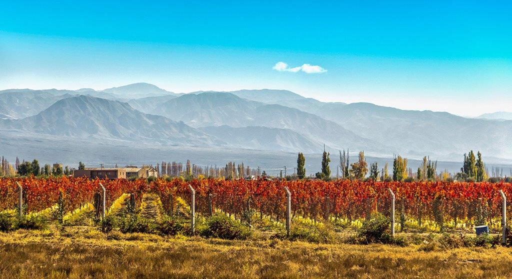 Kaheti vinska regija