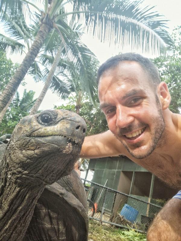 kornjače sa Aldabre