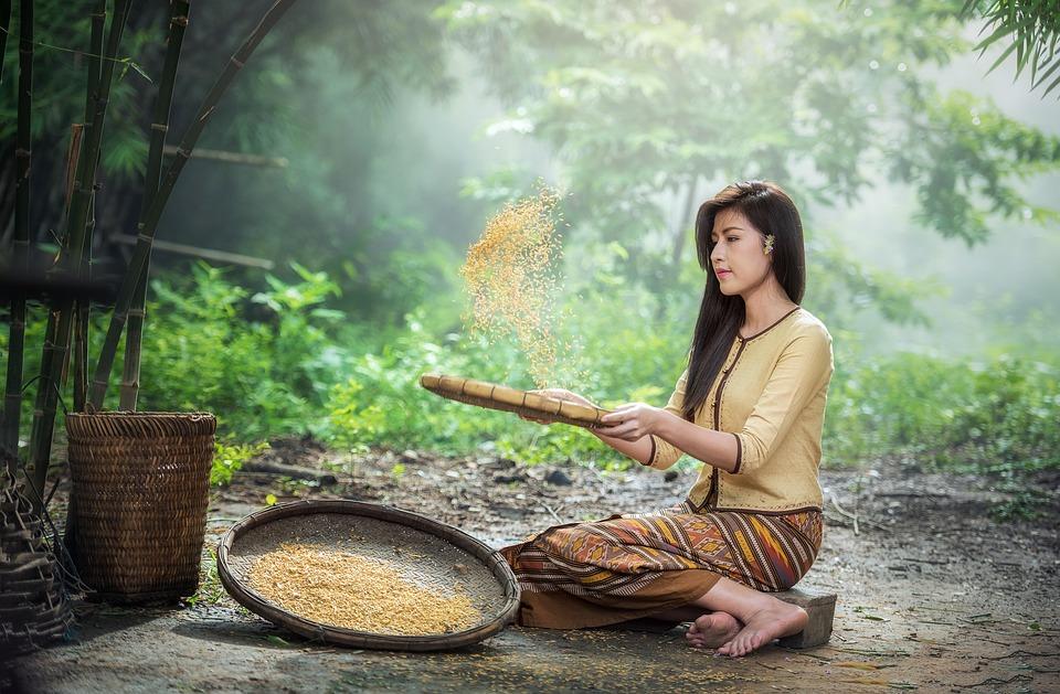 Laos viza