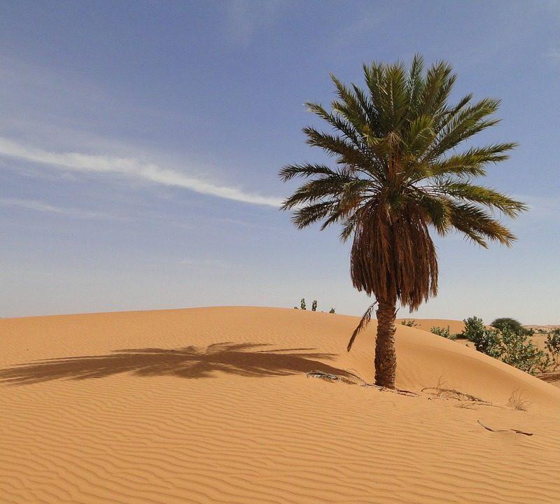 Mauritanija