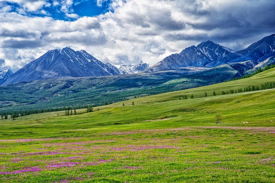 Mongolija viza