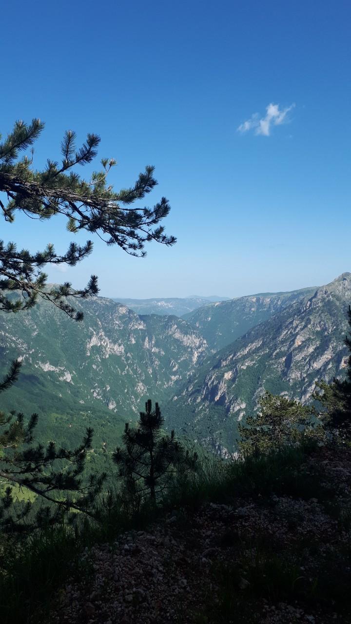 Pogleda na kanjon