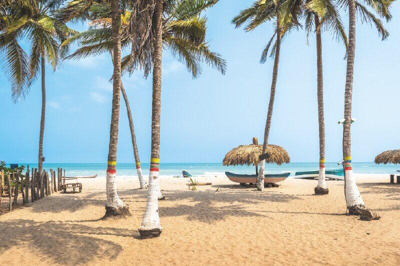 palomino plaža