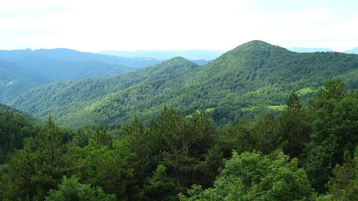 Planina Borja