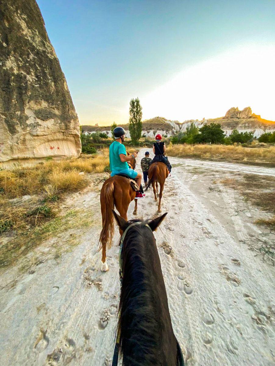 Konji u Kapadokiji